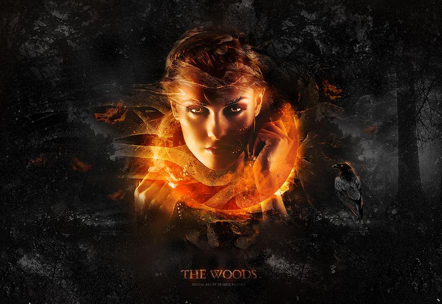 The Woods Creattica